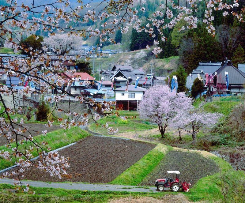 フォトコンテスト:山里の春
