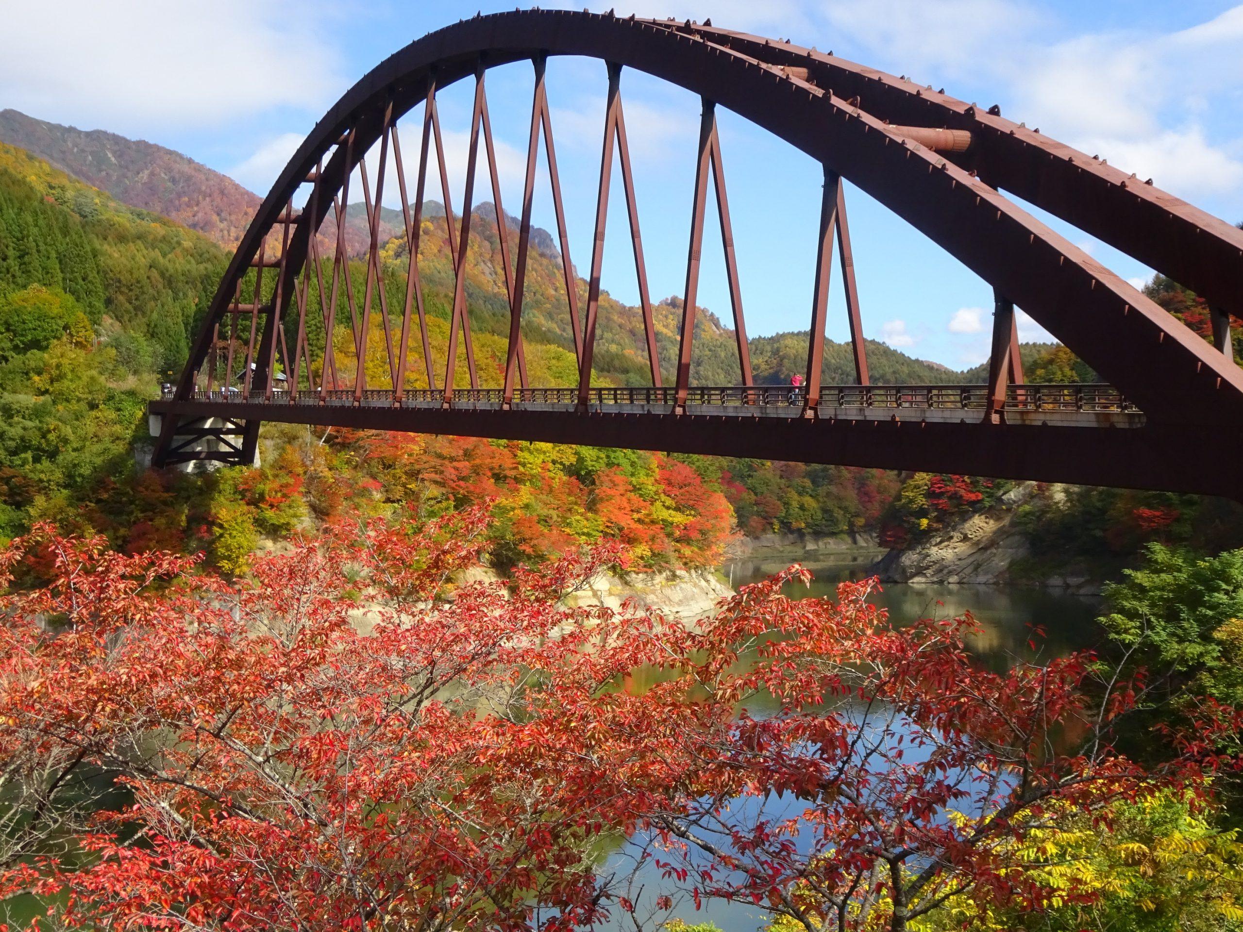 P4_5_autumn01929