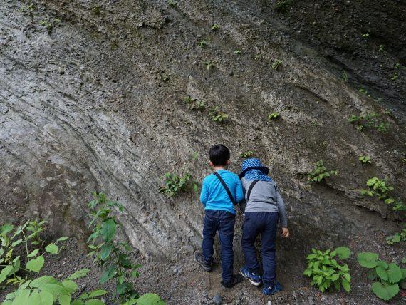 自然観察会「太古の海底を歩こう!奥裾花渓谷ウォーク」