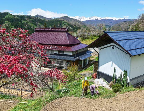 フォトコンテスト:山村の春